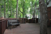 Look at this gorgeous backyard, complete with mature trees and a spacious wood deck!