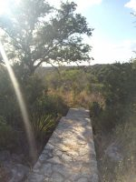 3014 Pace Bend Rd S, Spicewood TX 78669 (2)