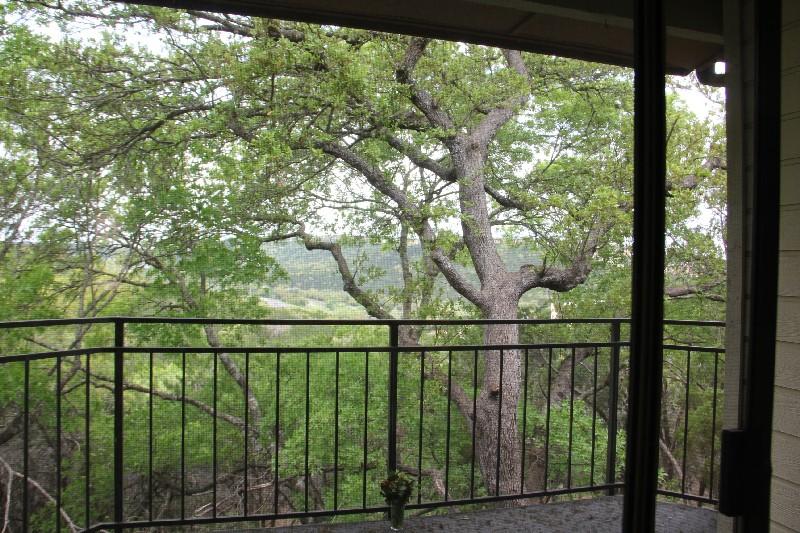 View From Patio - 6000 Shepherd Mountain Cv #708