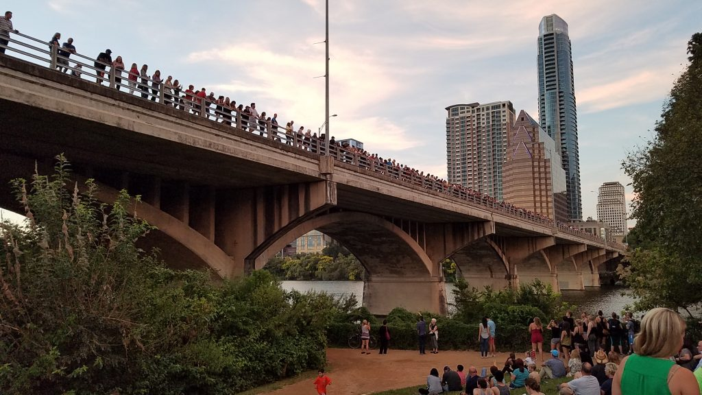 One of the many things to do in Austin Texas - Bat Watching from Congress Bridge